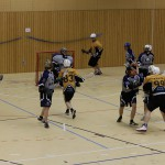 A men Vienna Lacrosse game at the ISARBOX